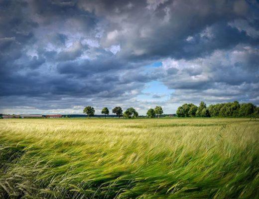 Schutz vor Wettereinflüssen